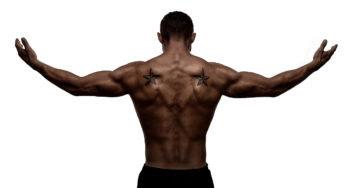 Les meilleurs exercices pour se muscler les triceps