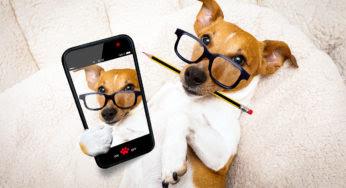 5 pistes pour trouver un nom de chien pas trop cucul !