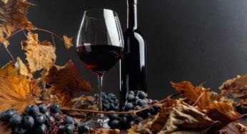 """Le vin nature est-il meilleur que les """"autres"""" vins ?"""