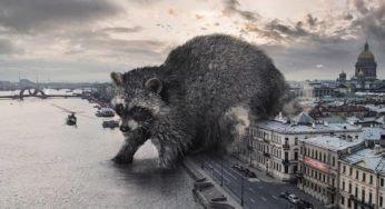 Des animaux géants profitent du confinement pour envahir Saint-Pétersbourg