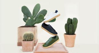 Clae lance les premières sneakers en cuir de cactus