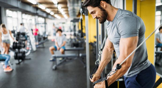 Diet et musculation : la poudre de grillon comme nouvelle protéine