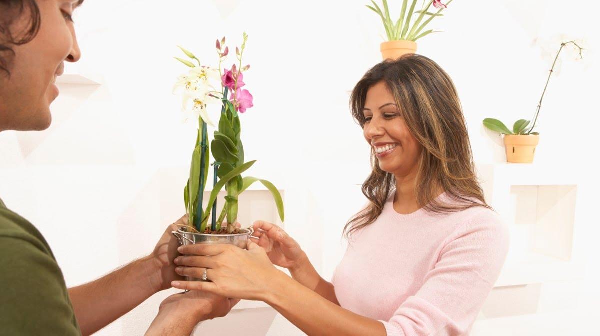 Pensez aussi à l'orchidée pour séduire une femme
