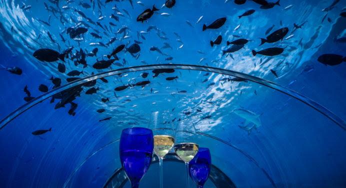 Le plus grand restaurant sous-marin du monde va ouvrir aux Maldives