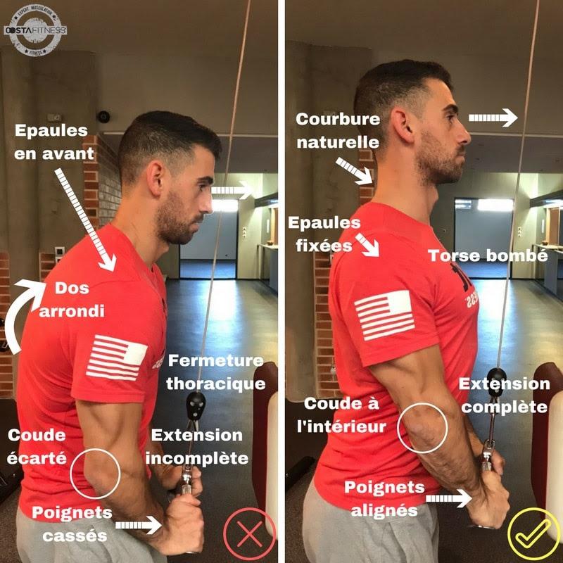 La bonne technique pour l'isolation des triceps