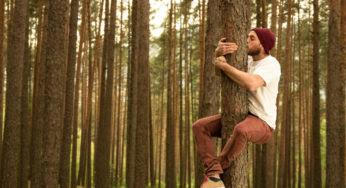 Sylvothérapie : qui veut faire des câlins à un arbre ?
