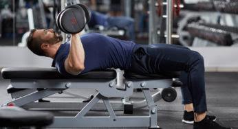 Quels sont les exercices indispensables pour se muscler efficacement ?