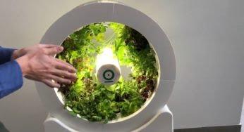 OGarden Smart : une solution intelligente pour manger bio