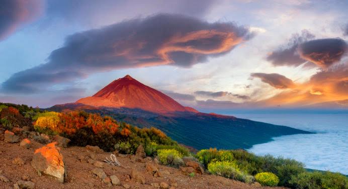 Pour cet été : Pourquoi pas Tenerife ?